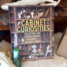 cabinet of curiosities book bar cabinet