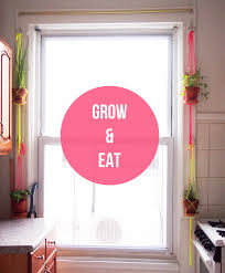 window herb harden how does your garden grow window herb garden edition cubicle57