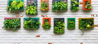 vertical gardens vertical gardening 101 doityourself com