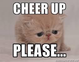 Cat Meme Maker - cheer up please super sad cat meme generator warm and