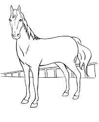 coloring in pages animals free printable coloring pages for