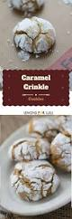 best 25 crackle cookies ideas on pinterest lemon desserts
