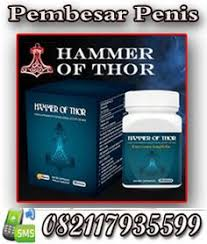08213222799 jual hammer of thor solo agen hammer of thor solo obat
