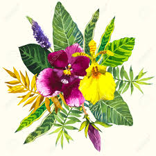 flowers and plants beautiful bouquet tropical flowers and plants on white background