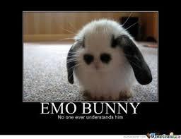 Emo Meme - emo bunny by valente09 meme center