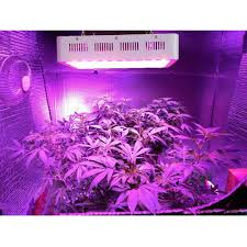 Indoor Plant Light by Amazon Com Kingtm 450w Full Spectrum 360 870nm Led Grow Light