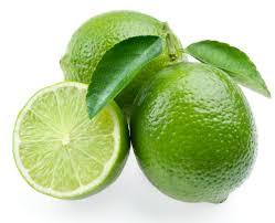 key lime green cocktail tree two trees in 1 pot meyer lemon key lime