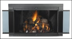 Ideas Fireplace Doors Decor Fireplace Enclosures Doors With Fireplace Amazing Black