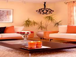 paint color in drawing room amazing sharp home design