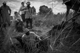 the plague alive and well in madagascar the washington post