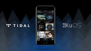 electronic photo albums top 10 tidal masters albums to on bluesound bluesound