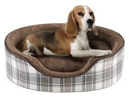 Tempur Pedic Dog Bed Best 25 Bolster Dog Bed Ideas On Pinterest Diy 3d Bag Diy