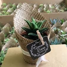 Flower Pot Wedding Favors - mini sukulent mini succulent kaktüs cactus wedding favors