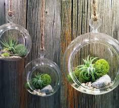 diy home decor hanging terrarium garden ideas design ideas