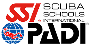 choosing padi or ssi