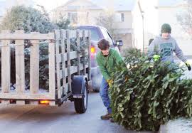 boy scouts start new year with christmas tree pickup all access
