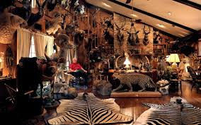 trophy room of hunter who bagged all 30 north american big game