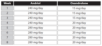 steroid cycles basics and example programs anabolic org