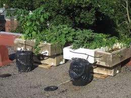 best damn organic recycled solar pump hydroponic system 14 steps