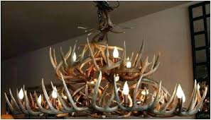 Antler Chandelier Canada Canadian Antler Chandeliers Real Antler Chandelier For Sale Medium
