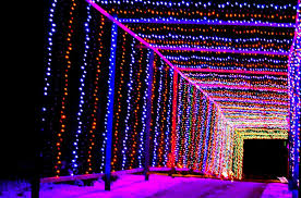 Rosemont Christmas Lights Best Light Displays In And Around Lake County 2015 Little Lake