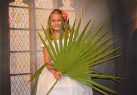 palms for palm sunday purchase purchase palms for palm sunday