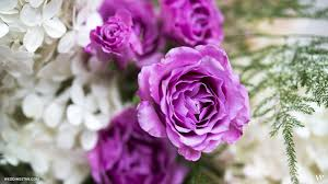 wedding flowers images free dress up your desktop with pretty wedding inspiration the