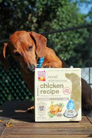 The Honest Kitchen Reviews by 785 Best Ammo The Dachshund U0027s Blog Images On Pinterest Blog The