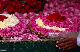roses for sale roses for sale at dargah mosque stock photo getty images