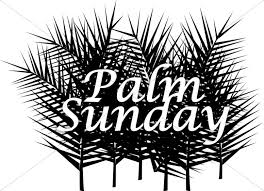 palm fronds for palm sunday palm sunday with many fronds lent word