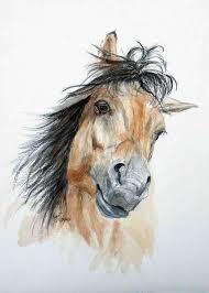 25 horse head drawing ideas horse art horses