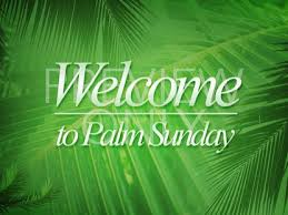palm branches for palm sunday palm branches sunday welcome benzalel worshiphouse media
