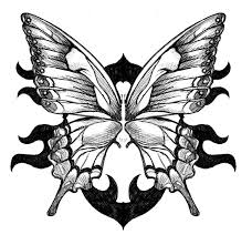 butterfly tattoo flash black outline photos pictures and