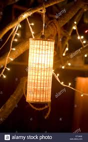 Hanging Tree Lights by Artificial Light Lamp And Small Bulbs Hanging From A Tree Light