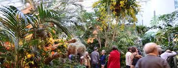 Missouri Botanical Gardens Orchid Show