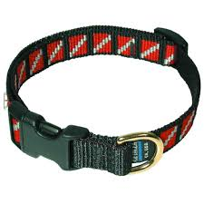 Padi Flag Dive Flag Dog Collar U2013 Dan U0027s Dive Shop