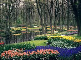 keukenhof gardens netherlands i want to visit this place someday