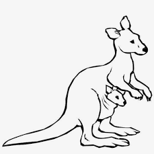 colours drawing wallpaper cute kangaroo holds its kid colour