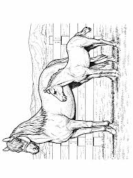 coloring page horse animal coloring pages 25