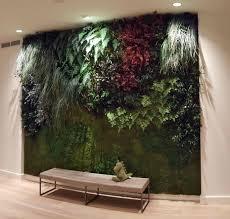 bynaturedesign folia plants