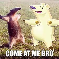 You Jelly Bro Meme - candy crush memes part deux blog