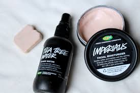 lush cosmetics black friday lush cosmetics u2013 mackenzie kendall