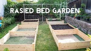 fall raised bed vegetable gardening for beginners vegetable