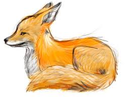 the 25 best fox sketch ideas on pinterest fox tattoos fox