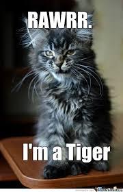 Tiger Meme - tiger by ronald foks meme center