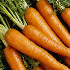 Freezing Root Vegetables - planting fall vegetables