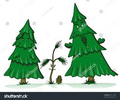 pine tree family cartoon sapling daughter stock vector 15111850