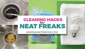 neat freaks cleaning hacks for the neat freak andrea s notebook