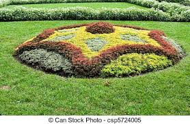 stock images of abstract shape created with plants in ornamental