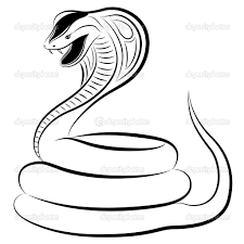 cobra clipart coloring page pencil and in color cobra clipart